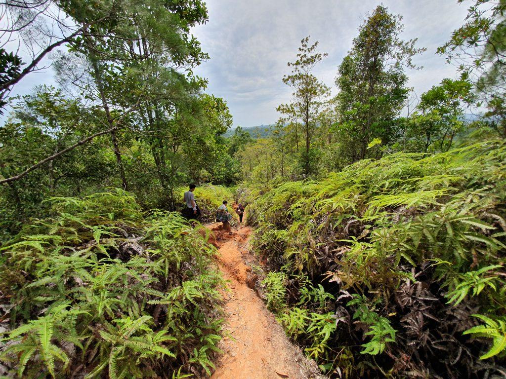 ブルネイの3つの最高のハイキングコース
