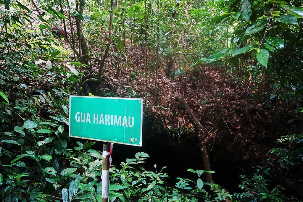 ブルネイの未発見の洞窟を探索する