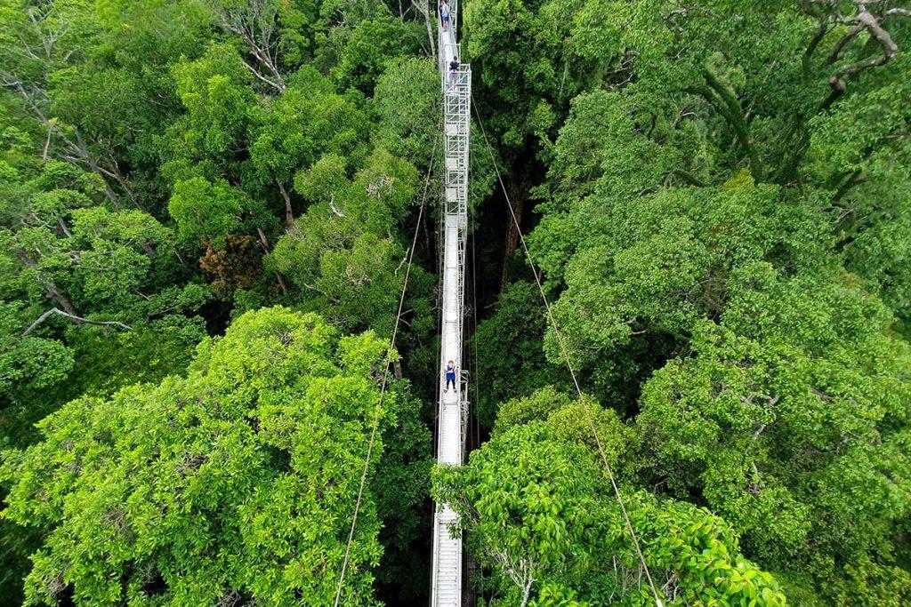 ウル トゥンブロン国立公園の野生の心を呼び起こすようなアトラクション5選